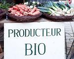Zoom sur le métier de producteur bio
